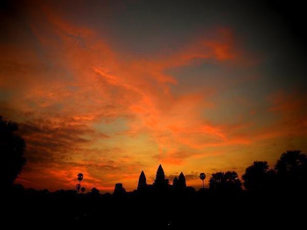 Wschód słońca nad Angkor Watem, nad którym tego poranku przeleciał ogromny, ognisty Feniks. Charakterystyczne palmy cukrowe po prawej i lewej stronie od świątyni.