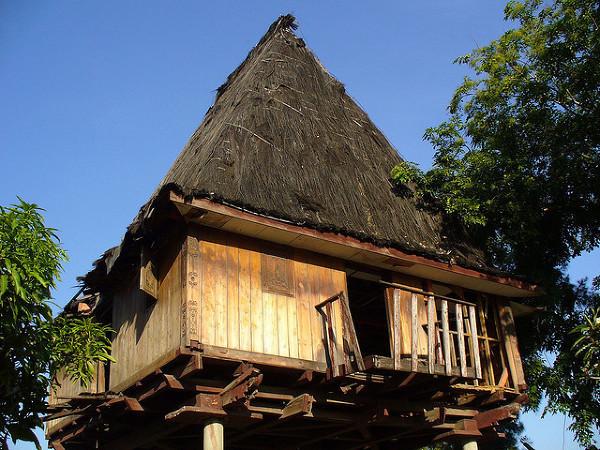 Tradycyjny Timorski dom