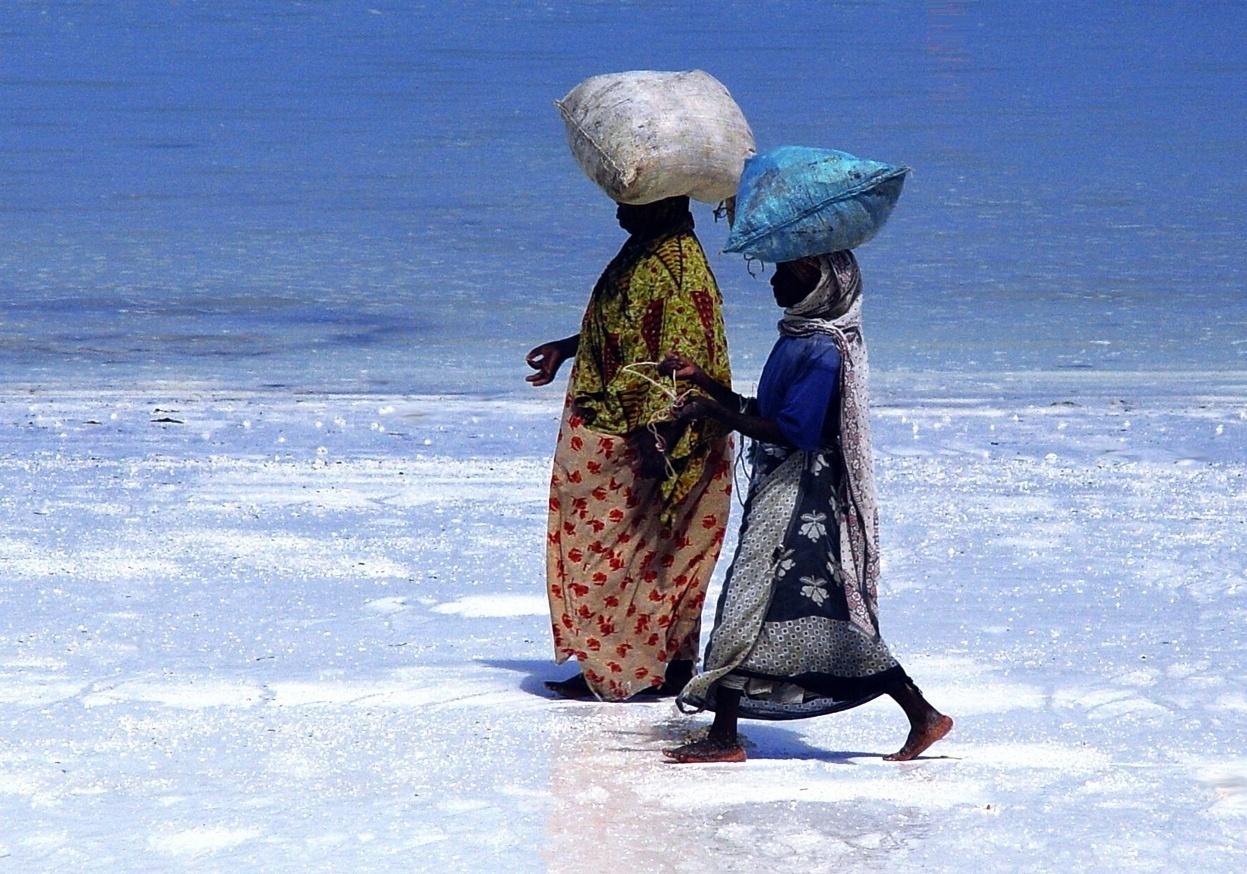 Kobiety niosące wysuszone algi na plaży w Zanzibarze