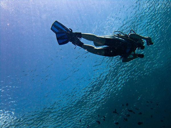 Nurkowanie u wybrzeży Bali
