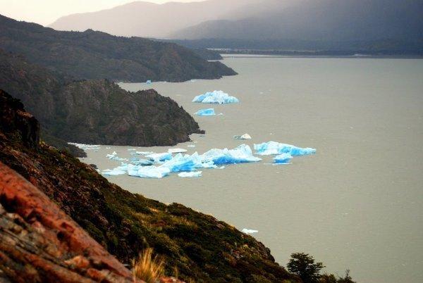 Neonowe lodowce