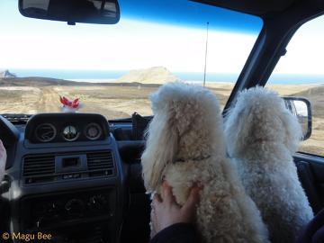 Nasi przewodnicy po okolicach lodowca Snaefsjokull.