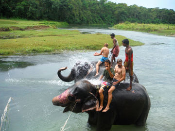 Słoń najlepszym przyjacielem człowieka? Nepal