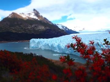 Perito Moreno- urzekające piękno lodu