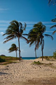 Dobrze jest na koniec pobytu odpocząć na przepięknych kubańskich plażach