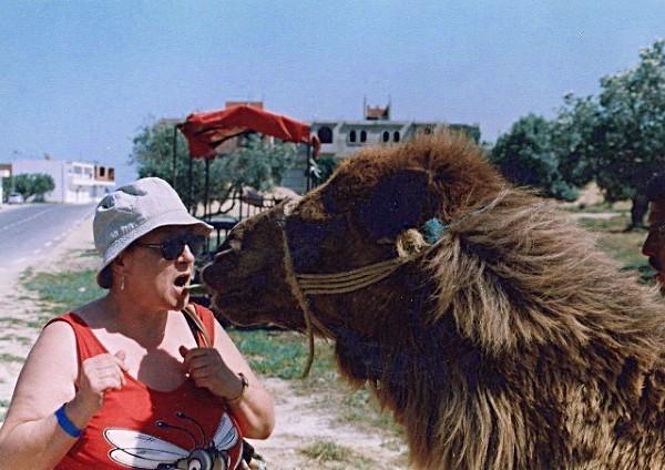 Bliskie spotkanie z wielbłądem. Okolice Sousse