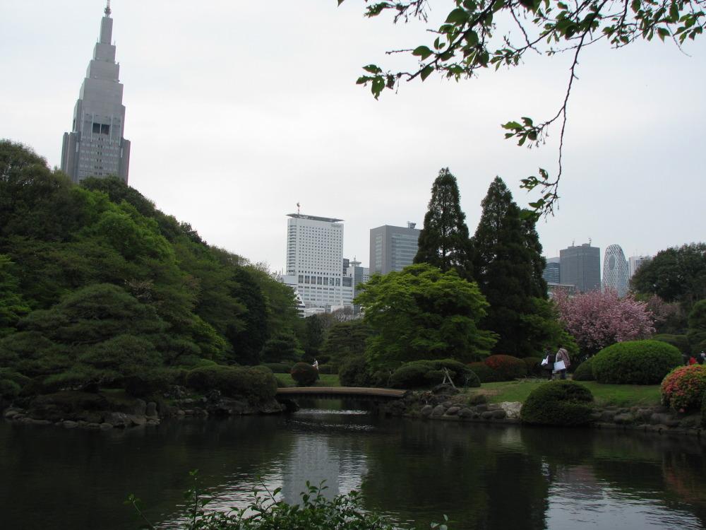 Piękny i duży tokijski park - Shinjuku Gyoen