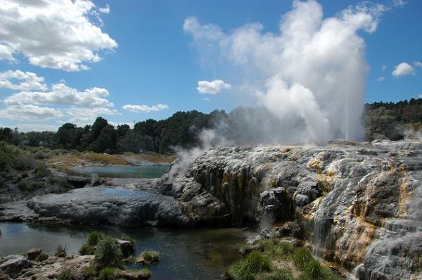 Pohutu, czyli wystrzałowy gorący prysznic; Rotorua