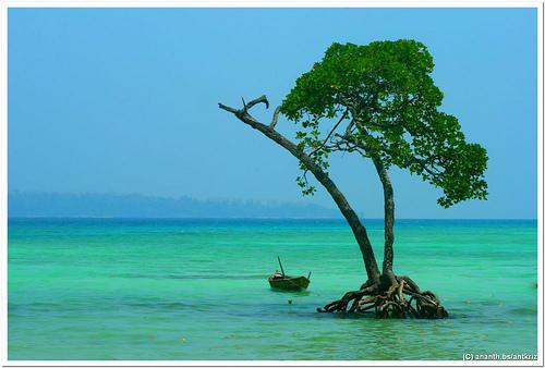 Przez wielu Andamany są nazywane rajem na ziemi