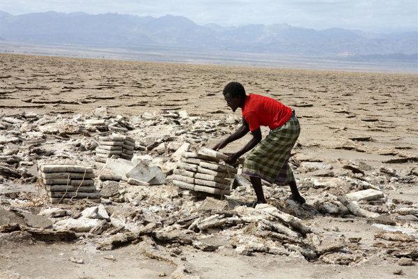 Jezioro Asala to główne miejsce wydobycia soli, tutaj mężczyzna w plemienia Afarów w trakcie pracy