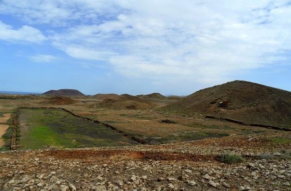 Pola uprawne między stożkami wulkanicznymi, Fuerteventura