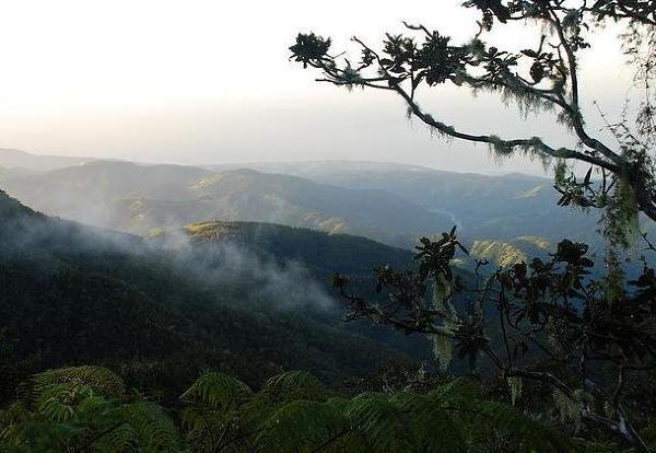 Blue Mountains, Jamajka. Majestatyczne Góry Błękitne rozciągają się między przedmieściami Kingston a północnym krańcem wyspy.