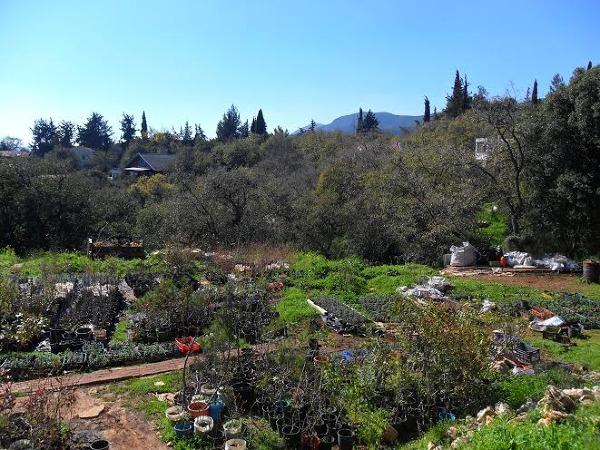 Widok na farmę w wiosce Amirim