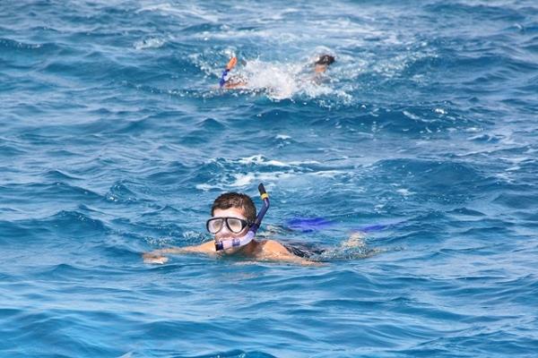 Snorkeling na rafie koralowej