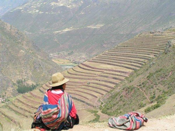 Tarasy na słynnej trasie do Machu Picchu