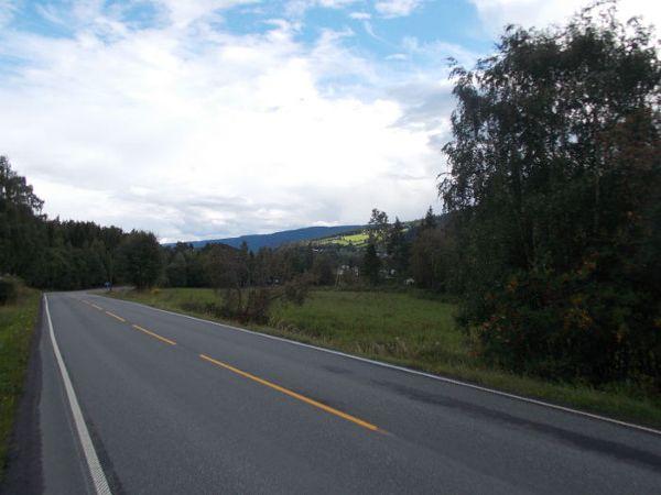Droga E-16 do ruchliwych nie należy...