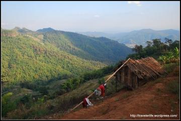 Widok podczas trekkingu.