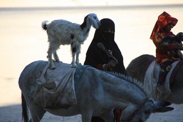 Bedunika czyli pierwsze spojrzenie w twarz Egiptu