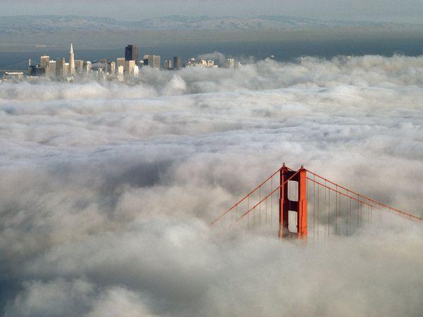 Ze szczytu w San Francisco można podziwiać Golden Gate Bridge, a także panoramę miasta.