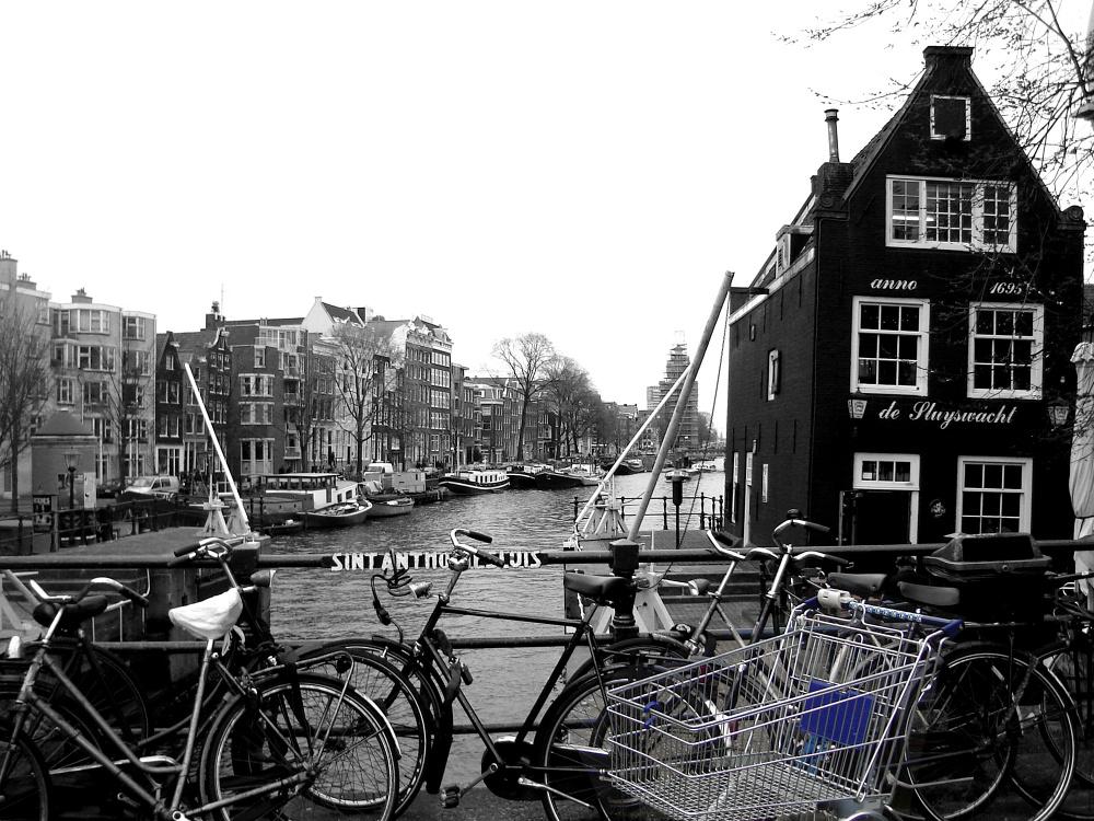 Cała Holandia na rowerze