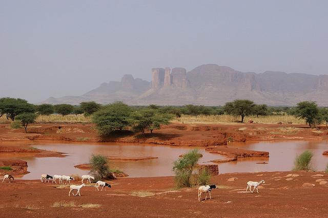 Mali – pustynne tajemnice