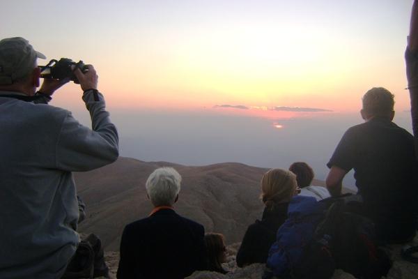 Stonka nemrucka gremialnie obserwuje zachód słońca