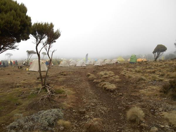 kolejny obóz, już we mgle