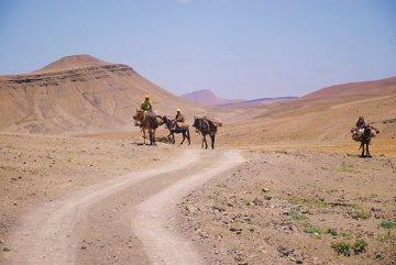 Berberowie spotkani na trasie