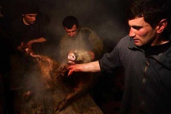 Oprawianie świni