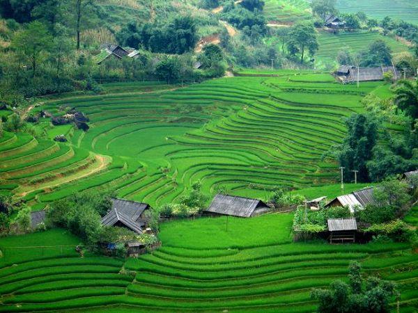 Kraj tygodnia – Wietnam