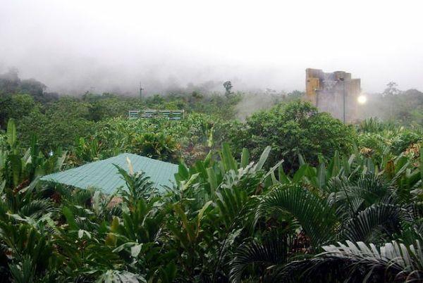 Baseny Baldiego umieszczone były w dżunglowej scenerii