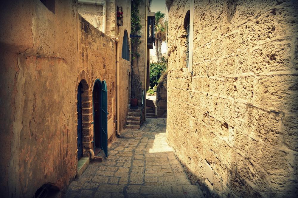 Transwestyta na Eurowizji. Stop komunikacji miejskiej w Szabas, czyli Izrael świat sprzeczności i kontrastów
