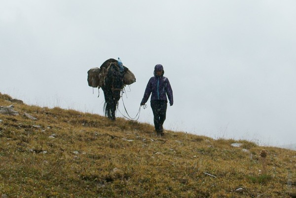 Azja, Kirgistan, konno przez góry.