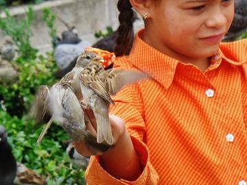 Dziewczynka z ptakami (Paryż)