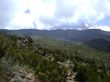 Szczyty Kibo (po prawej) i Mawenzi (po lewej) widziane z wrzosowisk