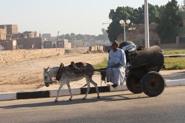 Środek transportu w Luksorze