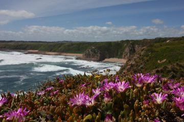 Szlak pieszy na Cape Woolamai. Widok na południowe wybrzeże Phillip Island.