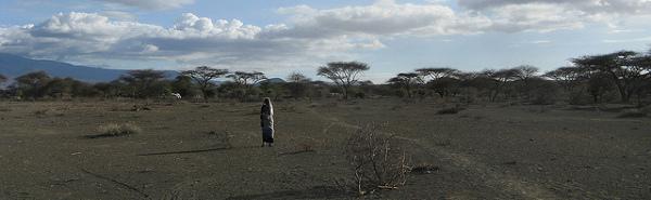 Masaj. Zdjęcie zostalo zrobione w Simanjiro, Manyara, Tanzania, 28 Października, 2009