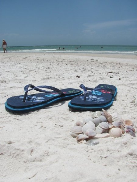 Floryda - idealne miejsce na wakacje. Warto dodać, że tutaj wakacje trwają cały rok :)