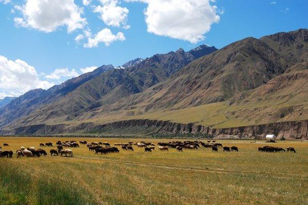 Azja, Kirgistan, widok na szlak prowadzący w góry Tien Szan.