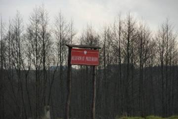 Na Suwalszczyźnie znajduje się około 20 rezerwatów przyrody