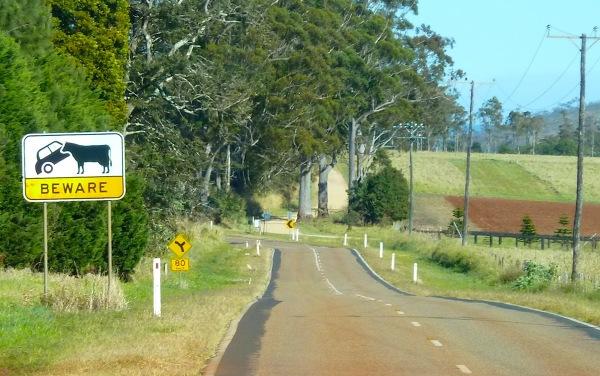 czasem pojawiały się takie znaki: oznaczały one, że krowy są tutaj arcy silne;) i mogą przewrócić samochód osobowy, lol