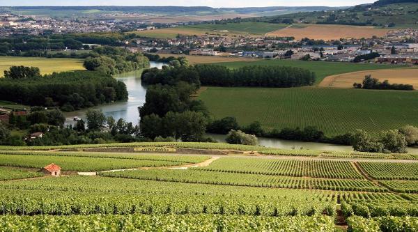 Kalendarium wydarzeń winiarskich w Europie