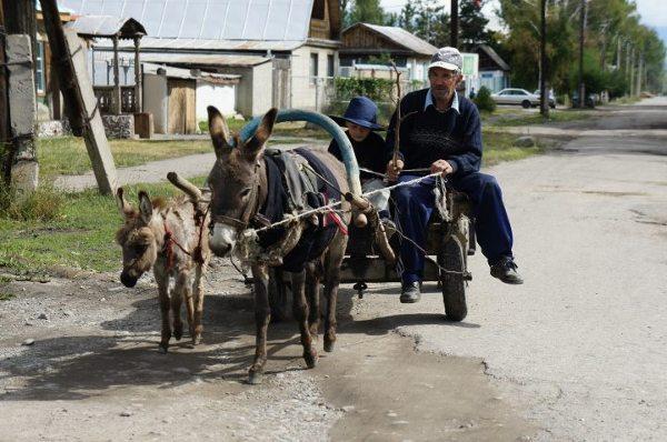 Azja, Kirgistan, życie codzienne w miejscowości Karakol.