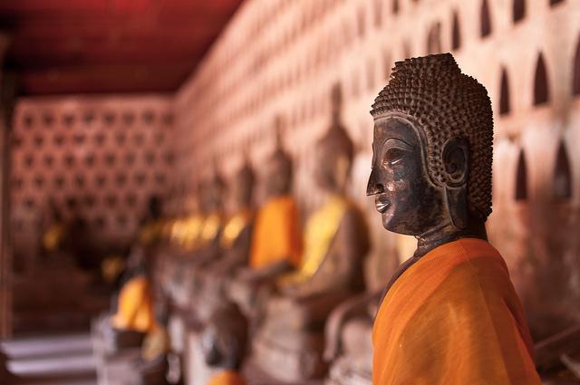 Liryka, Autentyzm, Otwartość, Spokój – cały LAOS