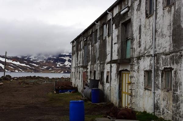 Sceneria jak z taniego horroru – tylko w miejscowości Djupavik