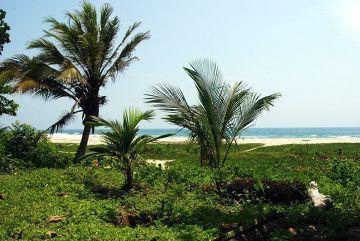 Plaże Tayrona