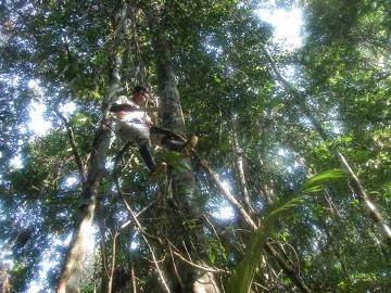 Człowiek-małpa, pomocnik Juana Carlosa