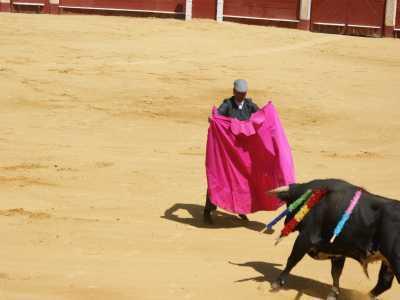 Korrida – jeden z symbolów Hiszpanii. Nierówna walka człowieka z bykiem