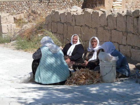 Wioska niedaleko Mardin i jej towarzyskie mieszkanki